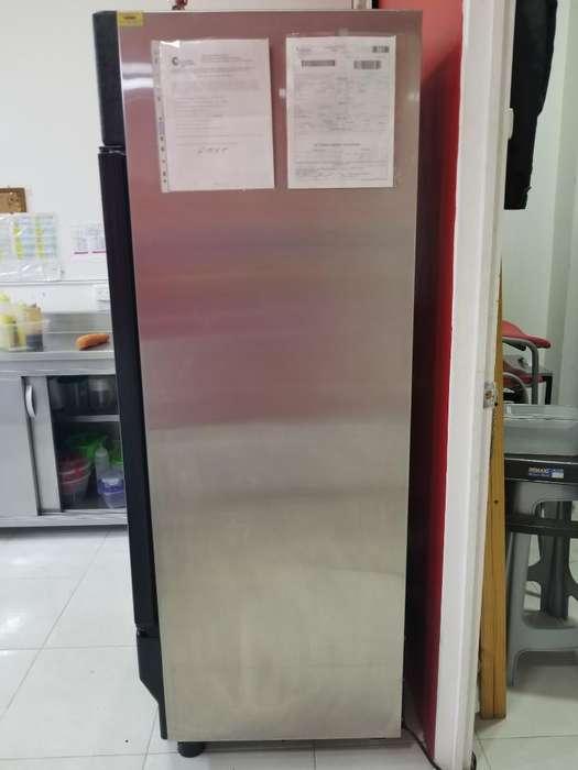 <strong>congelador</strong> Vertical en Acero Inoxidable