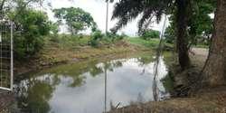 Finca Terreno Hacienda en Venta Km 55 Guayaquil Machala 11,11 Has, Finca en Venta en Guayas