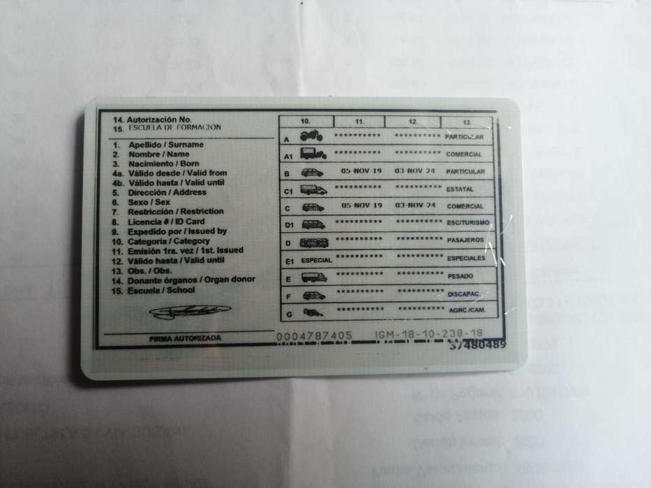 Chofer profesional con licencia tipo c