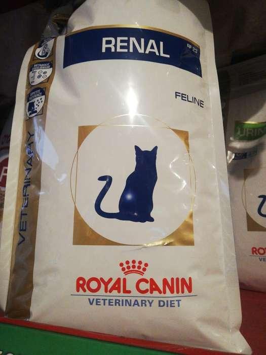 Renal Gato 2 Kg Royal Canin