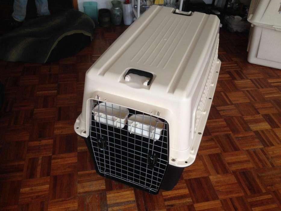 Jaula Kennel 600 Para Transporte De Perros Razas Grandes