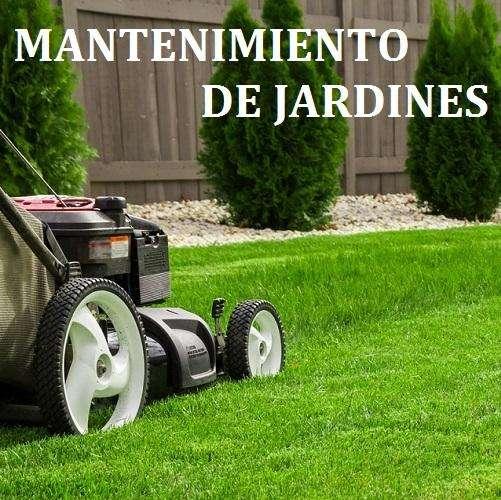 MANTENIMIENTO DE JARDINES / 3108780722