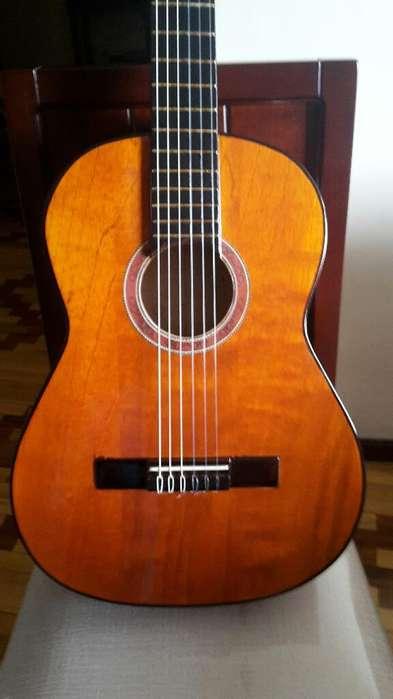 Guitarra Madera Cedro Nueva