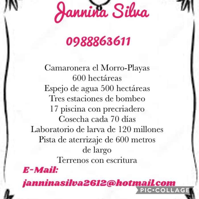Se Vende Camaronera El Morro-Playas