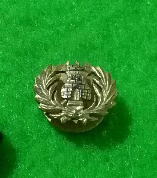 Antiguo Pin Distintivo Servicio Penitenciario de la provincia de Mendoza 1960