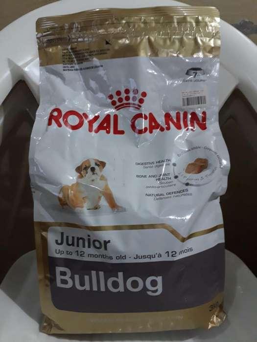 Royal Canin <strong>bulldog</strong> Junior de 3kg