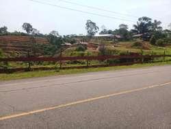 ID 121630 Vendo terreno en la carretera Iquitos - Nauta km 81.7 ideal para eco hotel o albergue