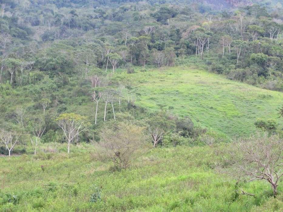 Moyobamba, lotes de terreno en venta. Zona agroindustrial