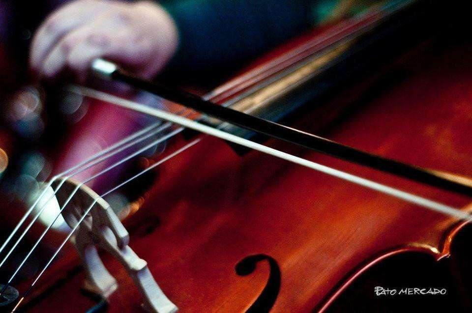 Musica para eventos: dúos, tríos de cello, violín, contrabajo