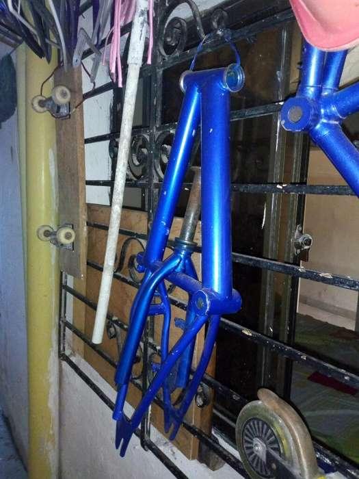 Caballo Bicicleta 12