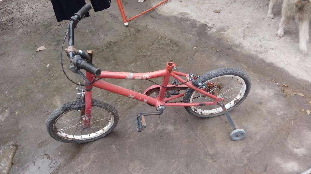 Bicleta D Nena R16