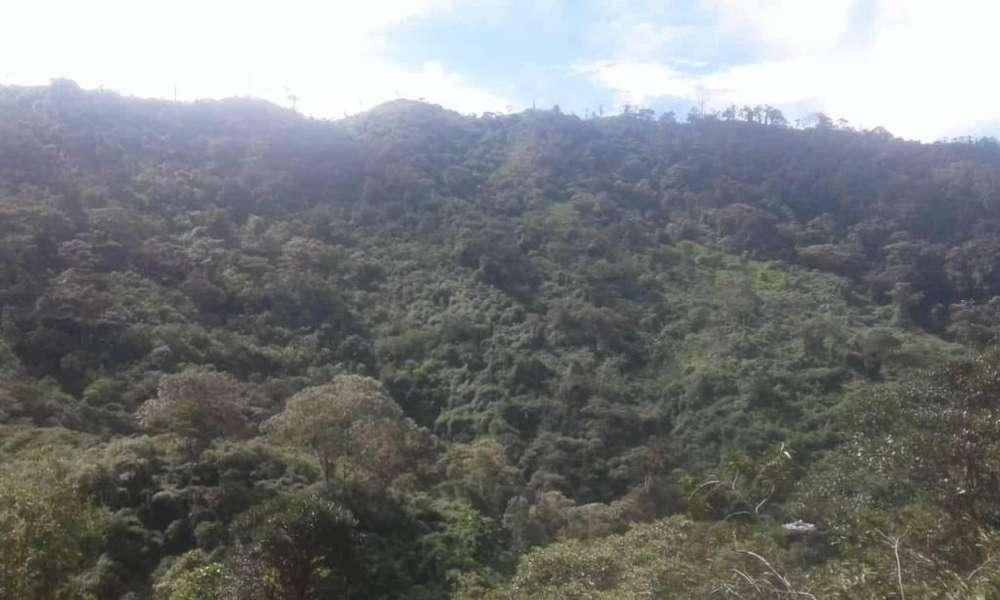 Para minería vendo 150 hectáreas cerca a Buenos Aires Imbabura