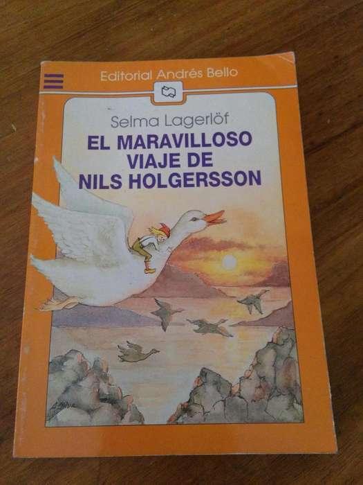 EL MARAVILLOSO VIAJE DE NILS HOLGERSSON . SELMA LAGERLOF . LITERATURA FANTASTICA INFANTIL