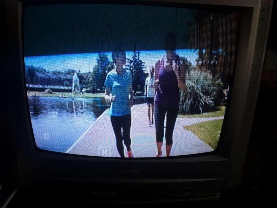 Tv Sanyo 20 sin Control Remoto