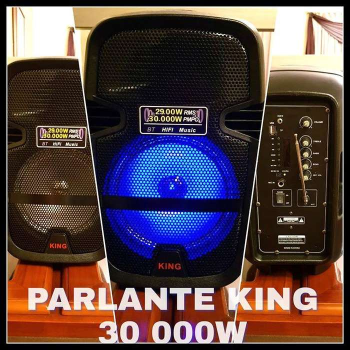 PARLANTE KING 30000 WATTS USB SD AUX RADIO FM BT INCLUIDO MICROFONO