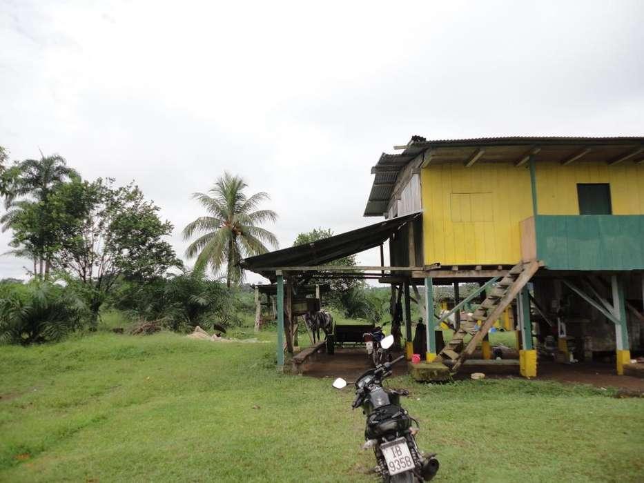 Finca de venta de 45 hectáreas