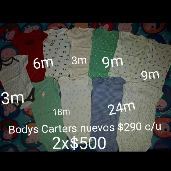 Bodys Carters