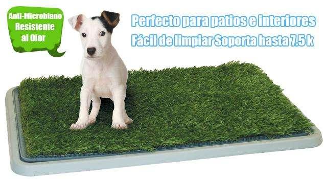 Baño portátil para Mascotas Ideal para Apartamentos