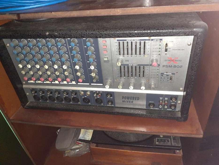Amplificador con 2 Columnas Y Microfono