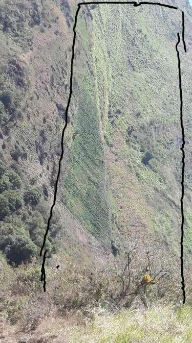 Terreno en Trigoloma