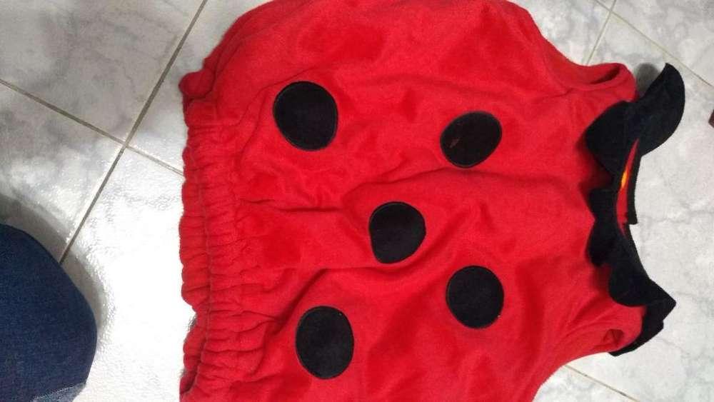 Disfraz de Mariquita para Bebe de 36mese