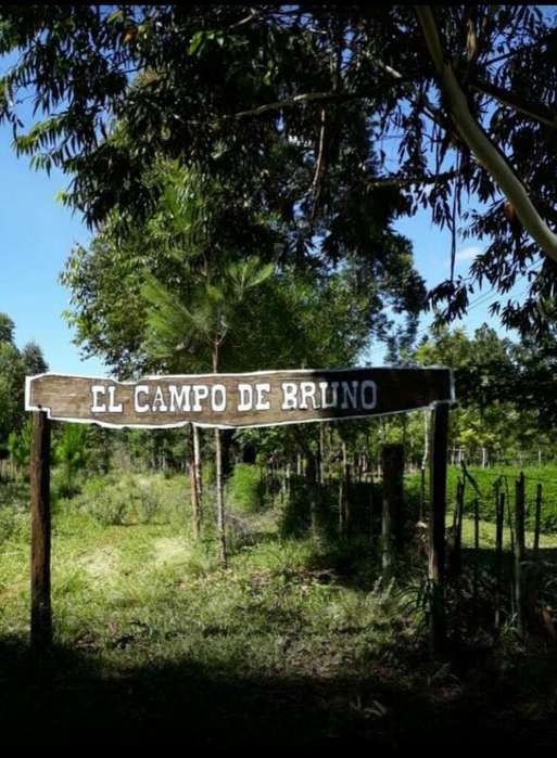 Campo - Casa Quinta - Santa Ines