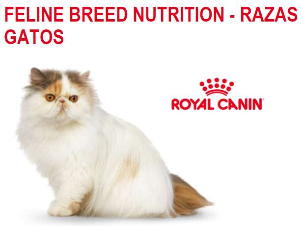 Royal Canin Alimento Gatos Superpremium