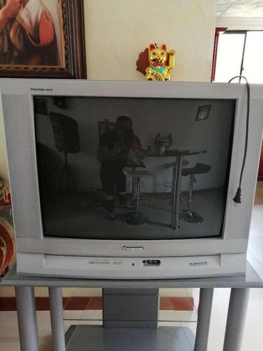 Vendo Televisor Panasonic con Mesa