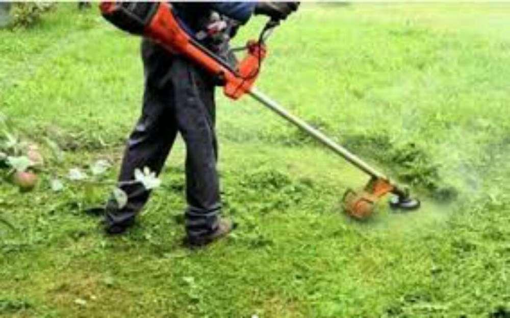 corte de cesped ,limpiezas de terrenos y poda de arboles.