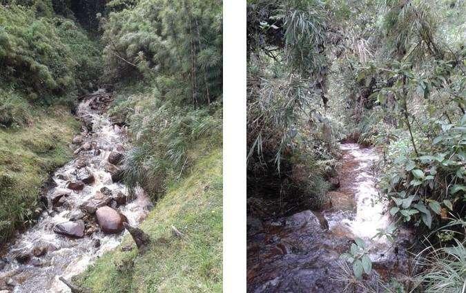 Finca de Conservación Y Potreros