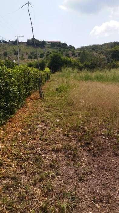 Lote en Conjunto Residencial en Anapoima, Cundinamarca 70-00094