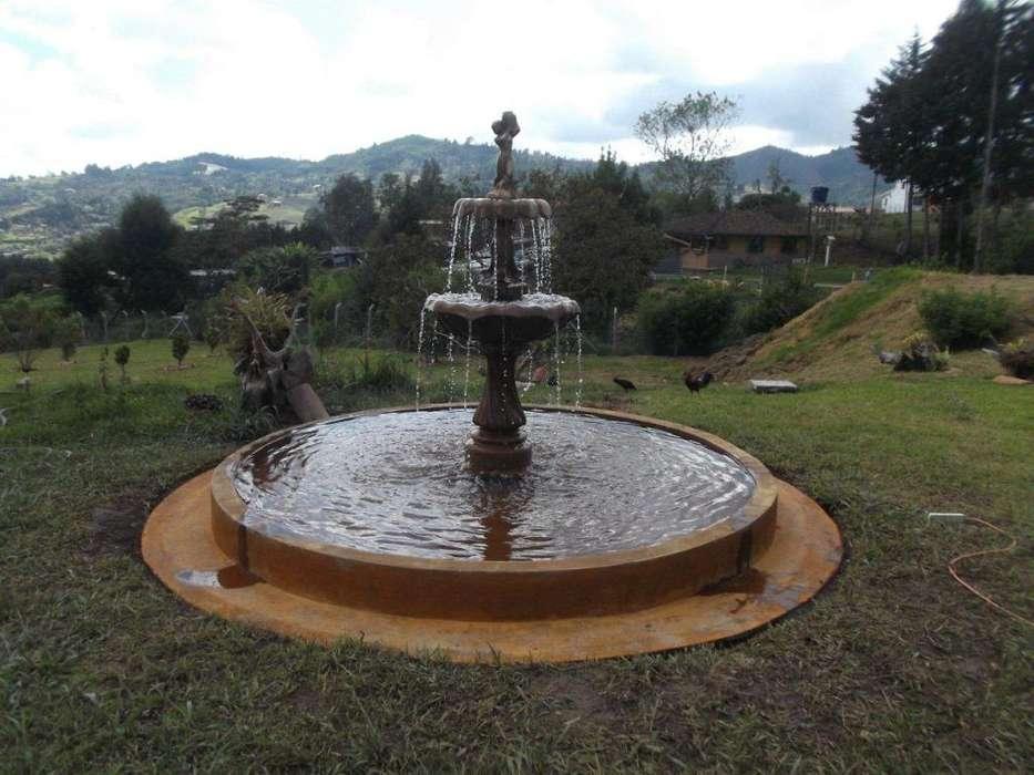 Fuentes, baño de pájaros, matero romano, juegos de mesa, silla con espaldar , tigueron ,Hongos etc