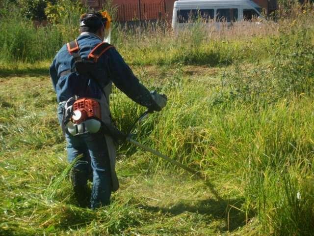 Empresa quindiana ofrece mantenimiento de prados