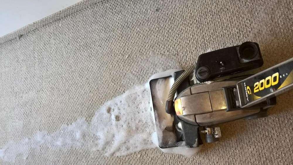 lavado y desinfección de tapetes y alfombras