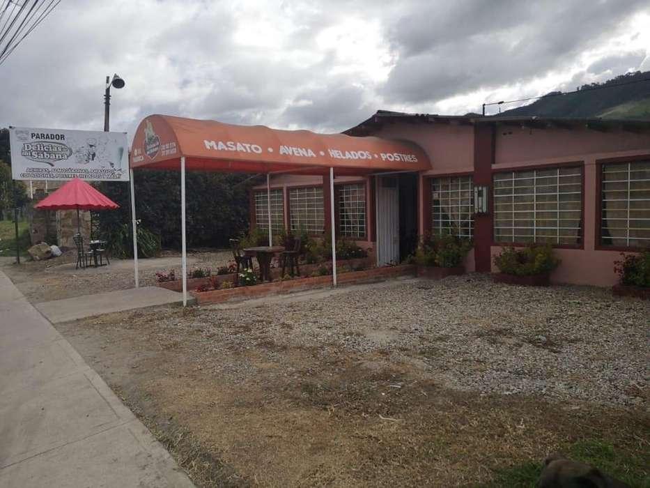 Negocio_Parador turístico_<strong>local</strong>_Tienda
