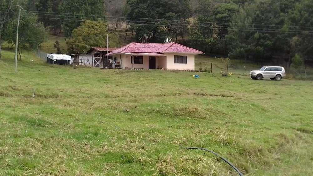 Vendo Hermosa Hacienda en La Paz 18 Hectáreas
