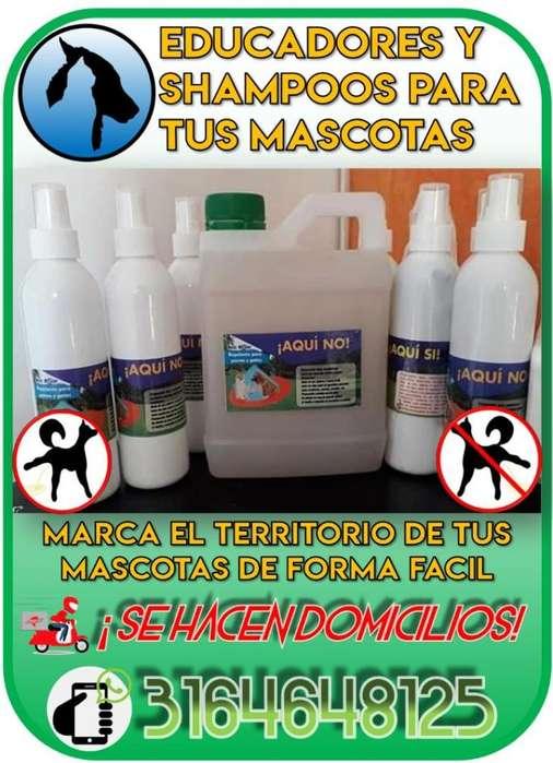 EDUCADORES Y SHAMPOO PARA MASCOTAS!!