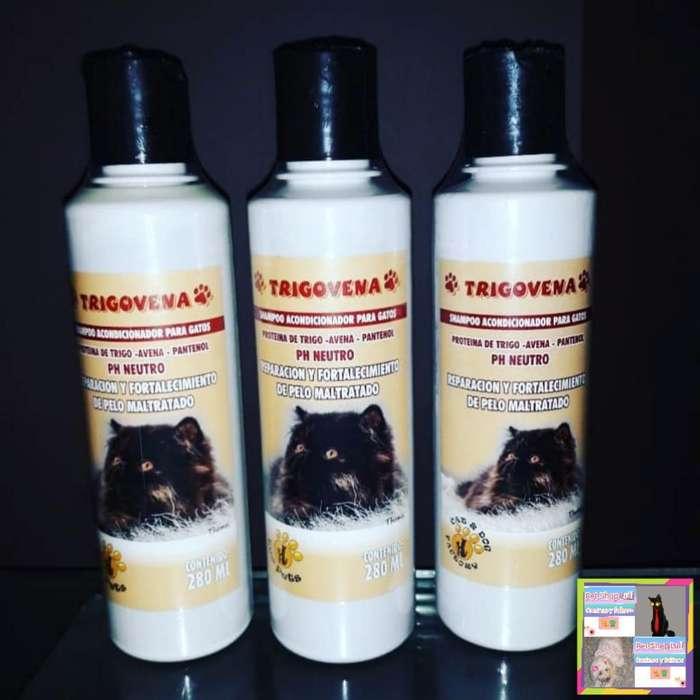 Shampoo para Gatos