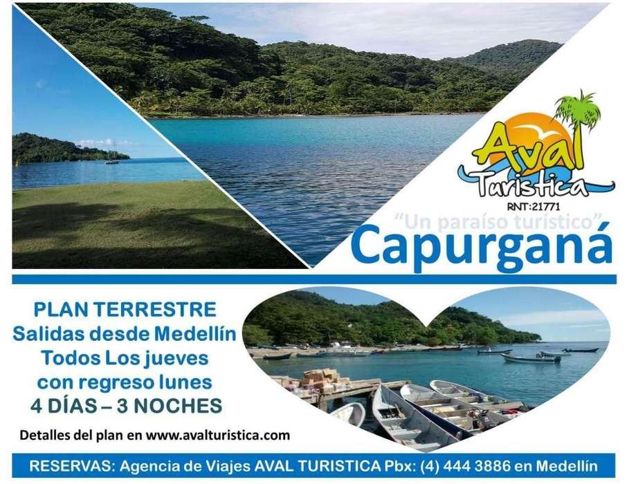 Excursiones a Capurganá salidas desde Medellín, Antioquia desde 729.000 por persona