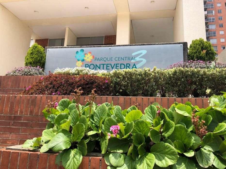 Amplio e iluminado, úbicadisimo en el sector exclusivo de Pontevedra - 6800081 68-00081