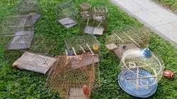 Lote de once Jaulas para aves