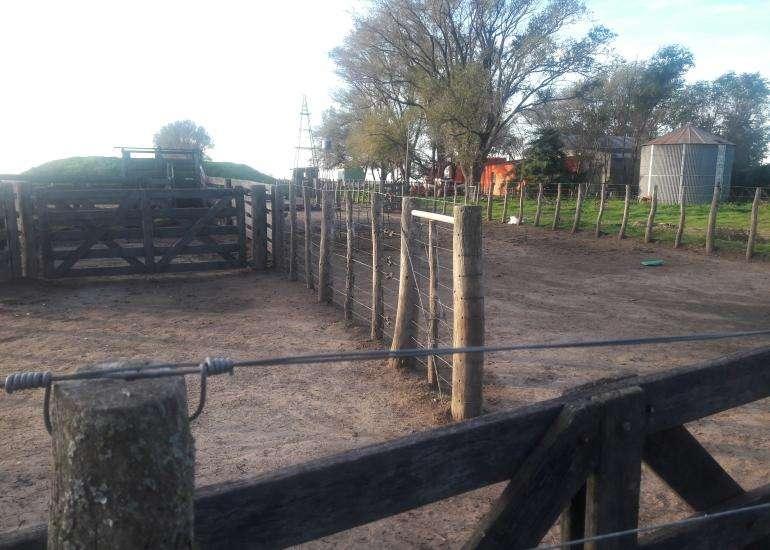 <strong>campo</strong> mixto en zona de Winifreda - LP Excelentes instalaciones.