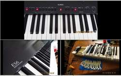 Afinador de Piano amp /exp en Cap y Prov , buenos aranceles