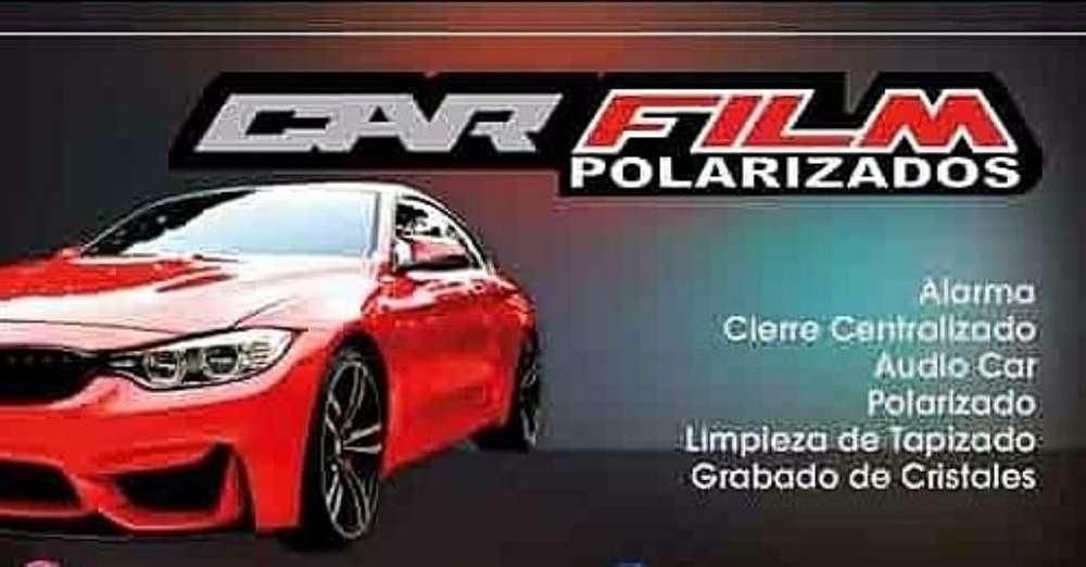 <strong>polarizado</strong>s para Autos
