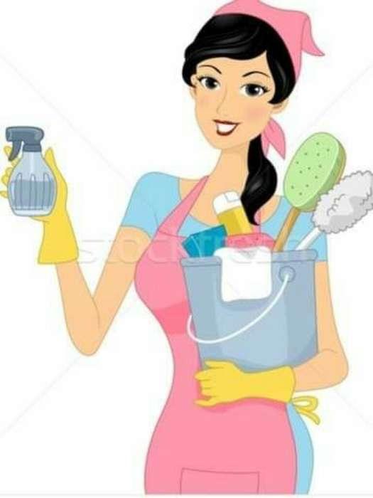 Persona Resp Limpia Casa Y Dpto 399