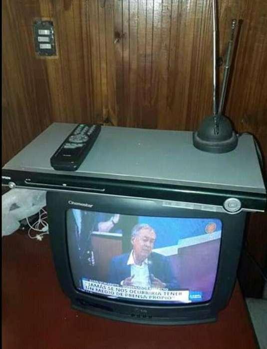 Vendo Tele de 14 con Control Y Dvd