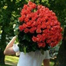 Se Necesita Diseñador Florar