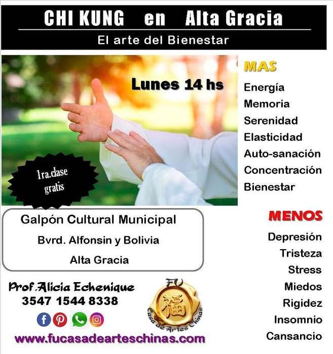 Chi Kung el arte del bienestar