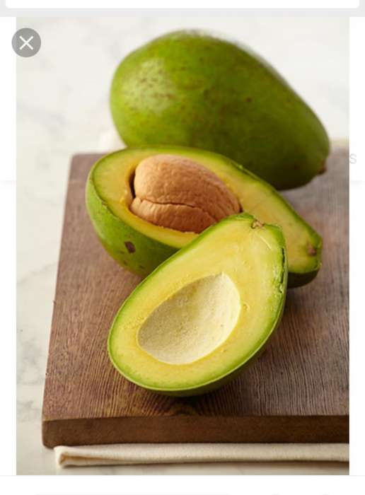 Aguacate Costeño