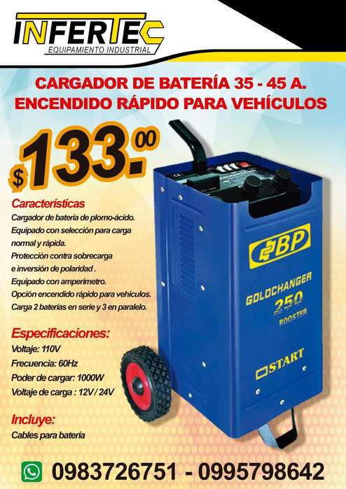 Cargador de baterías de vehículos